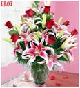 vietnam flower, vietnam flower shop, send flower to vietnam , vietnam anniversary flower, vietnam florist , flower to vietnam, flower of vietnam vietnam flower, vietnam flower shop, vietnam fresh flower, delivery flower to vietnam, send flower to vietnam, vietnam fresh flower, flower of vietnam, flower vietnam